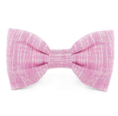Orchid Dog Bow Tie