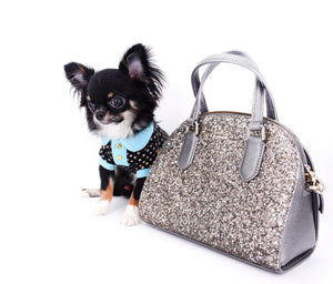 Birkin Doll Teacup Extreme Short Muzzle Boy