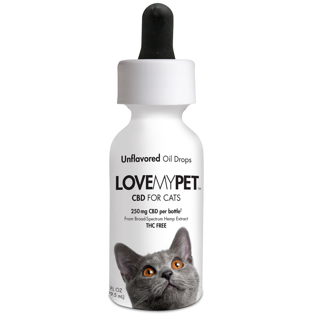 CBD Cat Oil Drops Unflavored