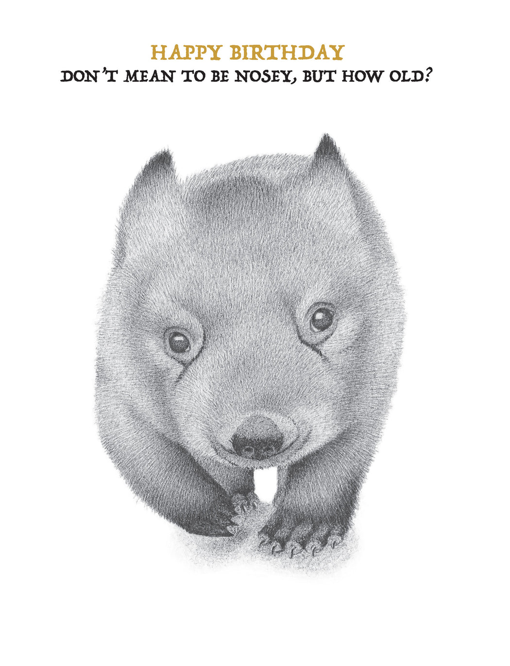 Squirrel Design Studio-Wombat Don't Mean To Be Nosey - Birthday Card-Mott and Mulberry