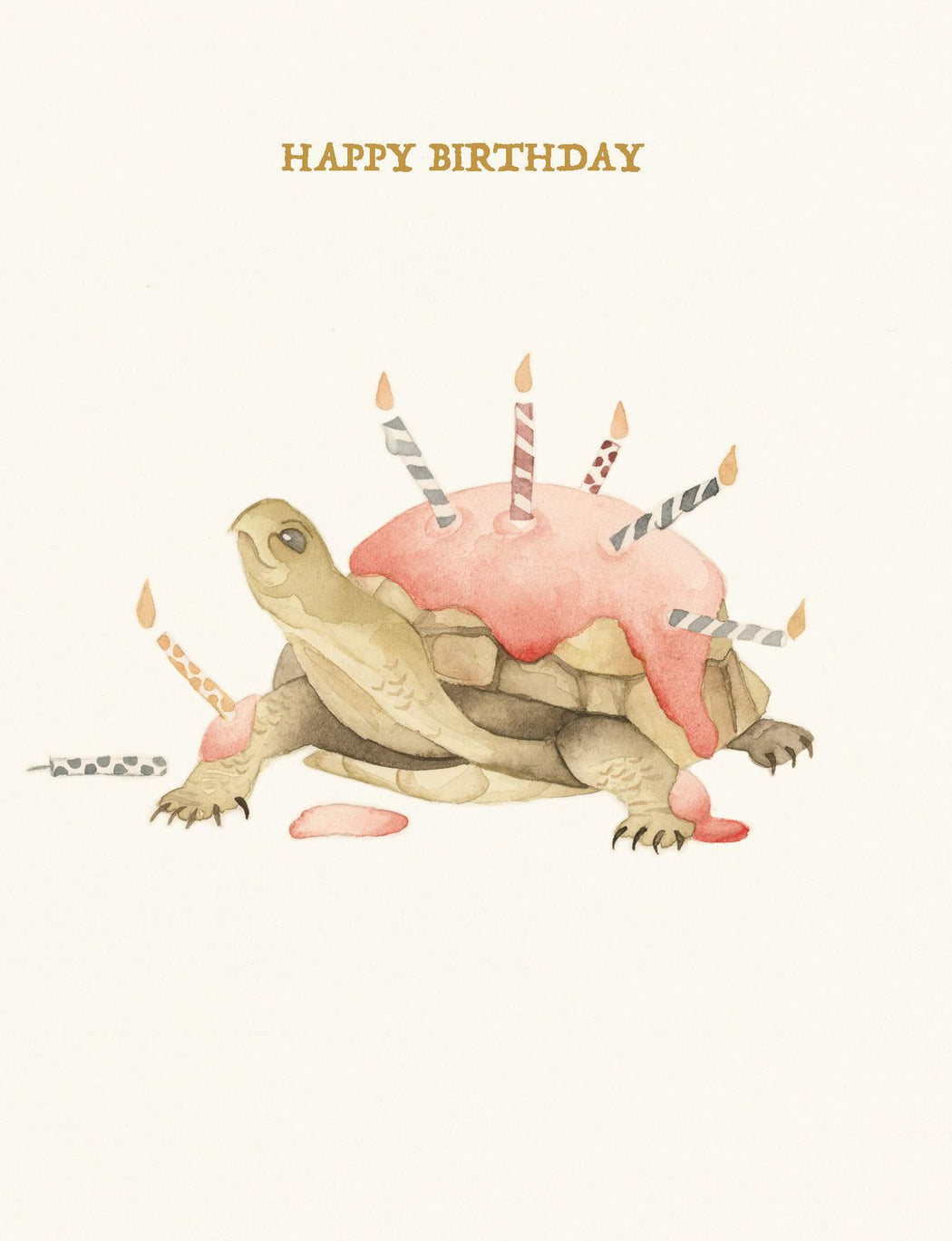Squirrel Design Studio-Tortoise Cake - Birthday Card-Mott and Mulberry