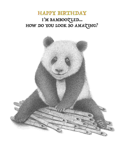 Squirrel Design Studio-Bamboozled Panda How Do You Look So Amazing? - Birthday Card-Mott and Mulberry
