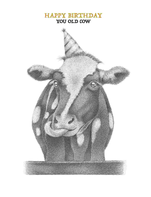Squirrel Design Studio-You Old Cow - Birthday Card-Mott and Mulberry