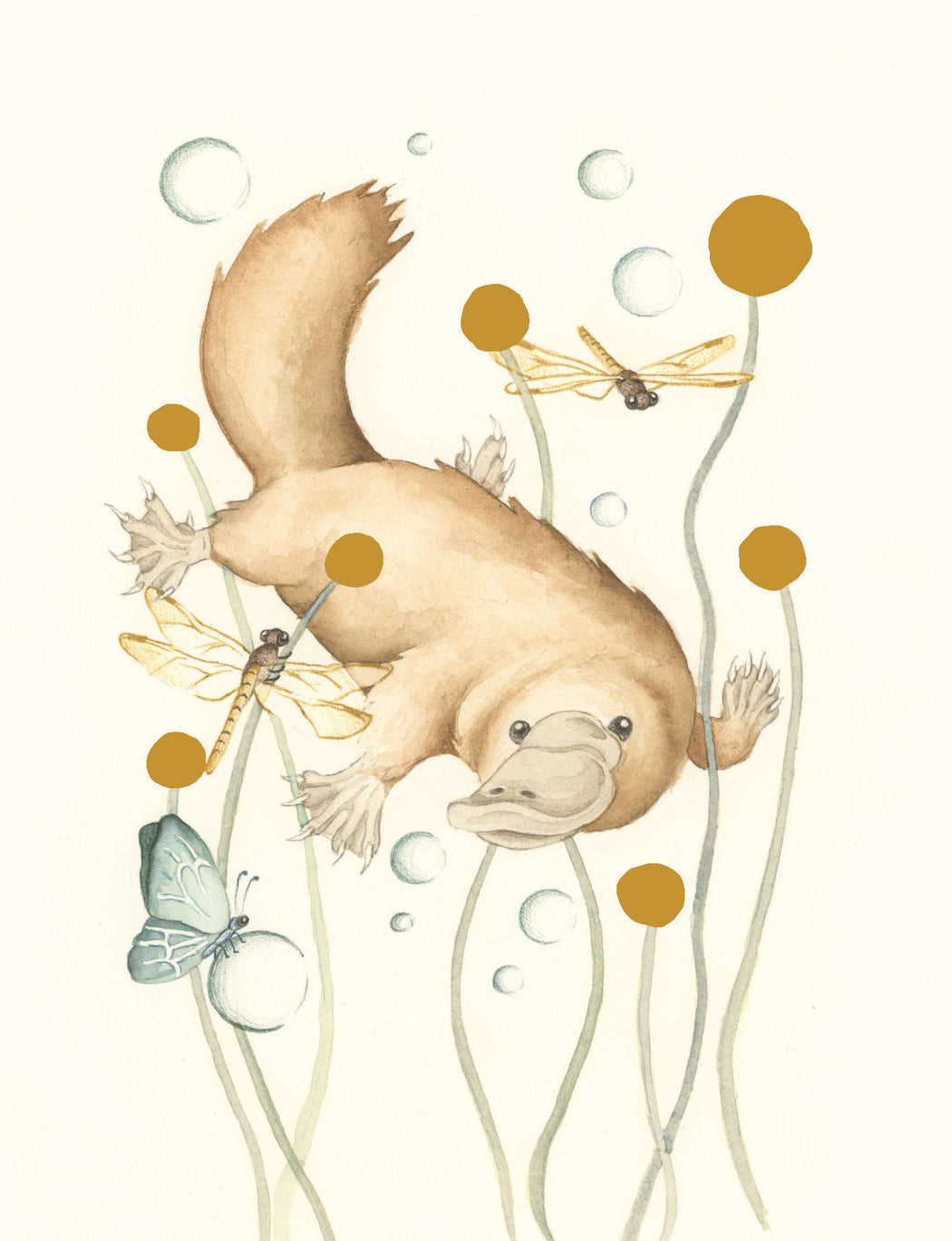 Squirrel Design Studio-Billy Button Bubbles GOLD FOIL  - Greeting Card-Mott and Mulberry