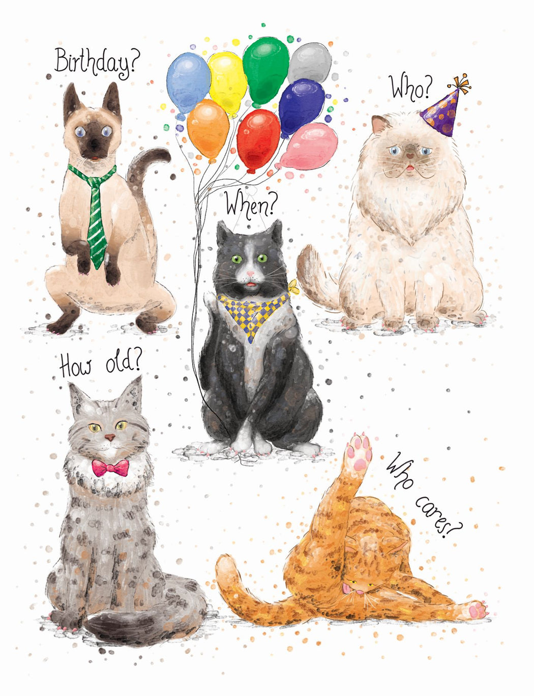 Squirrel Design Studio-Birthday Cats - Birthday Card-Mott and Mulberry