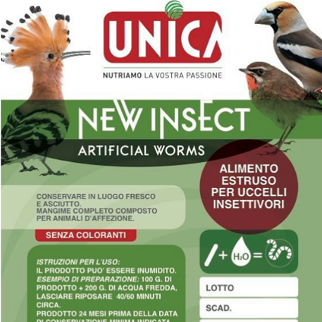 New Insect Worms