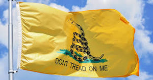 Don't Tread On Me Gadsden Snake Yellow Flag Banner American Flag USA 3x5 - 2nd Amendment Gun Works