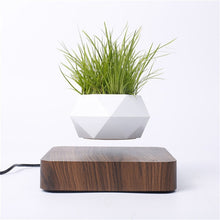 Load image into Gallery viewer, Levitating Planter