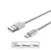 Apple iPhone iPad MFi Certified Lightning USB Fast Charge and Sync Cable Silver
