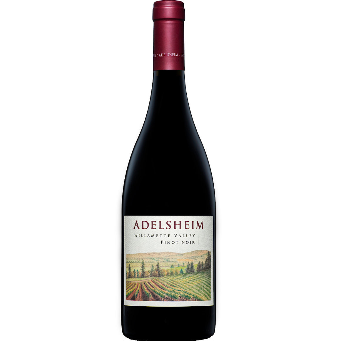 Adelsheim 'Willamette' Pinot Noir 12 Bottle Case