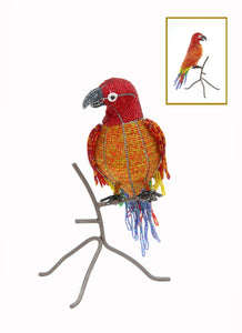 Parrot on Perch, Red