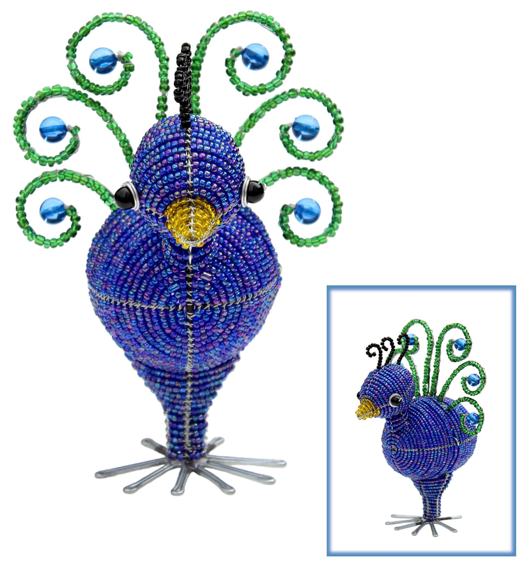 Peacock Baby