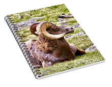Load image into Gallery viewer, Bighorn Ram In RMNP - Spiral Notebook