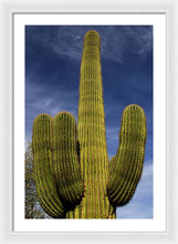 Load image into Gallery viewer, Blue Sky Saguaro - Framed Print