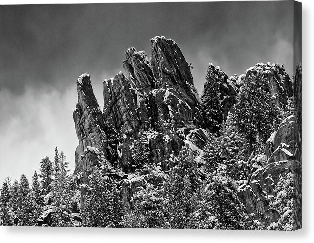 Jagged Trails in Winter - Canvas Print
