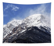 Load image into Gallery viewer, Mount Chapin Colorado - Tapestry