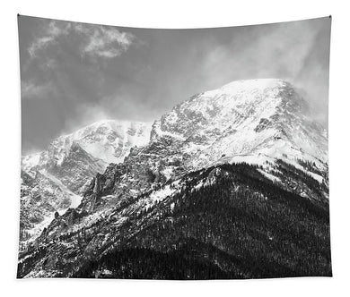 Mount Chapin RMNP - Tapestry