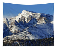 Load image into Gallery viewer, Taylor Peak And Sharkstooth, Rmnp - Tapestry