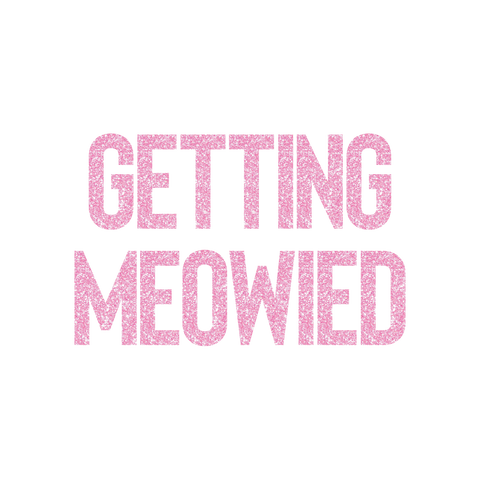 Getting Meowied Banner