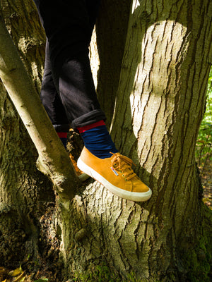The navy, mustard and red organic kind socks are being worn by an individual stood in a tree, wearing mustard plimsolls and pointing one of their feet towards the camera.