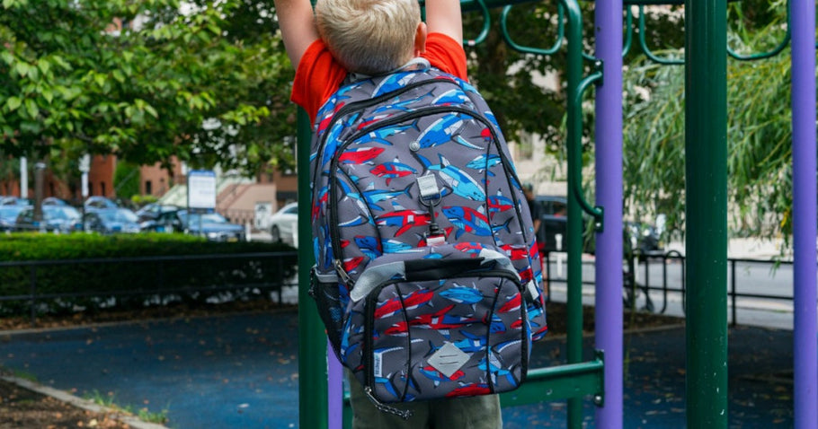 Fit & Fresh: Kids Backpack + Matching Lunch Bag ONLY $8 (Regularly $40)