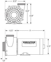 "Load image into Gallery viewer, Waterway Executive 2sp 48 frame 2""x2"" 120V 1.5HP 3420610-1A - Hot Tub Outfitters"
