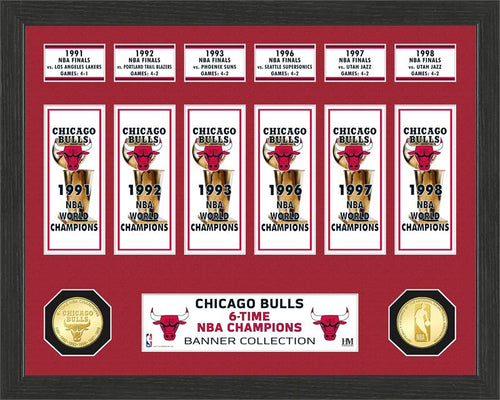 chicago bulls 6 time nba champions
