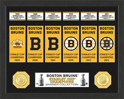 Boston Bruins Stanley Cup Champions