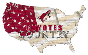 Arizona Coyotes USA Shape Flag Cutout
