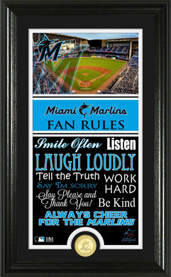 Miami Marlins Fan Rules Supreme Bronze Coin Photo Mint