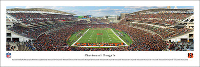 Cincinnati Bengals Paul Brown Stadium End Zone Panoramic Picture