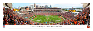 Cincinnati Bengals Paul Brown Stadium NFL 100th Season Panoramic Picture