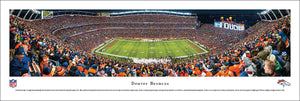 Denver Broncos Mile High Stadium 50 Yard Line Panoramic Picture