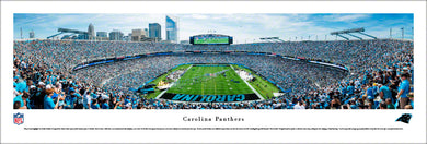 Carolina Panthers Bank of America Stadium Endzone Panoramic Picture