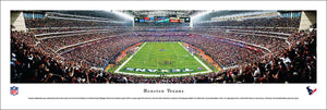 Houston Texans Reliant Stadium Endzone Panoramic Picture