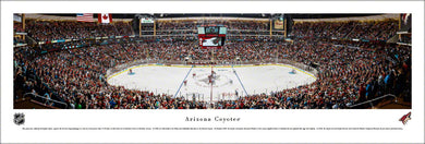 Arizona Coyotes Gila River Arena Panoramic Picture