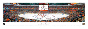 Anaheim Ducks Honda Center Panoramic Picture