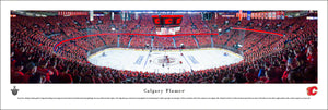 Calgary Flames Scotiabank Saddledome Panoramic Picture
