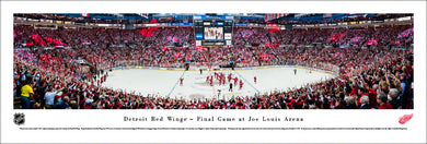 Detroit Red Wings Joe Louis Arena Final Game Panoramic Picture