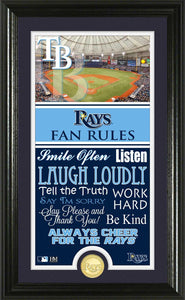 Tampa Bay Rays Fan Rules Supreme Bronze Coin Photo Mint