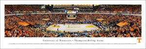 Tennessee Volunteers Basketball Thompson-Boling Arena Panoramic Picture