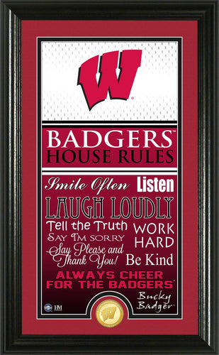 Wisconsin Badgers House Rules Supreme Bronze Coin Photo Mint