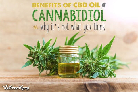 CBD Doctors Shop | CBD Oil has a various amount of benefits and in todays blog we talked about it's potential to help people with dyslexia, dysgraphia, and ADHD.