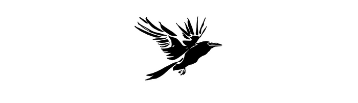 Announcing Raven: New Fiction Imprint from Paraclete that Recognizes Darkness, Reaches for Light
