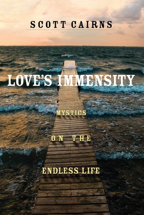 Love's Immensity