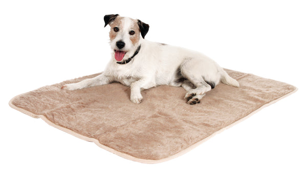 Thermo Pet Blanket 100 X 75cm