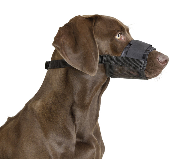 Dog Muzzle Nylon Short Head 30cm Size 8