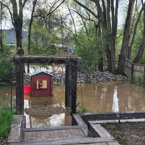 Grab Your Galoshes! Steps To Recovering After A Flood