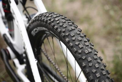 Ride faster and with fewer flats on Schwalbe Marathon tires.