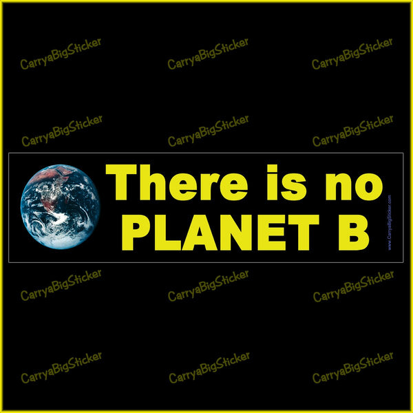 Bumper Sticker or Bumper Magnet says, There is no Planet B. Features photo of Earth from space.